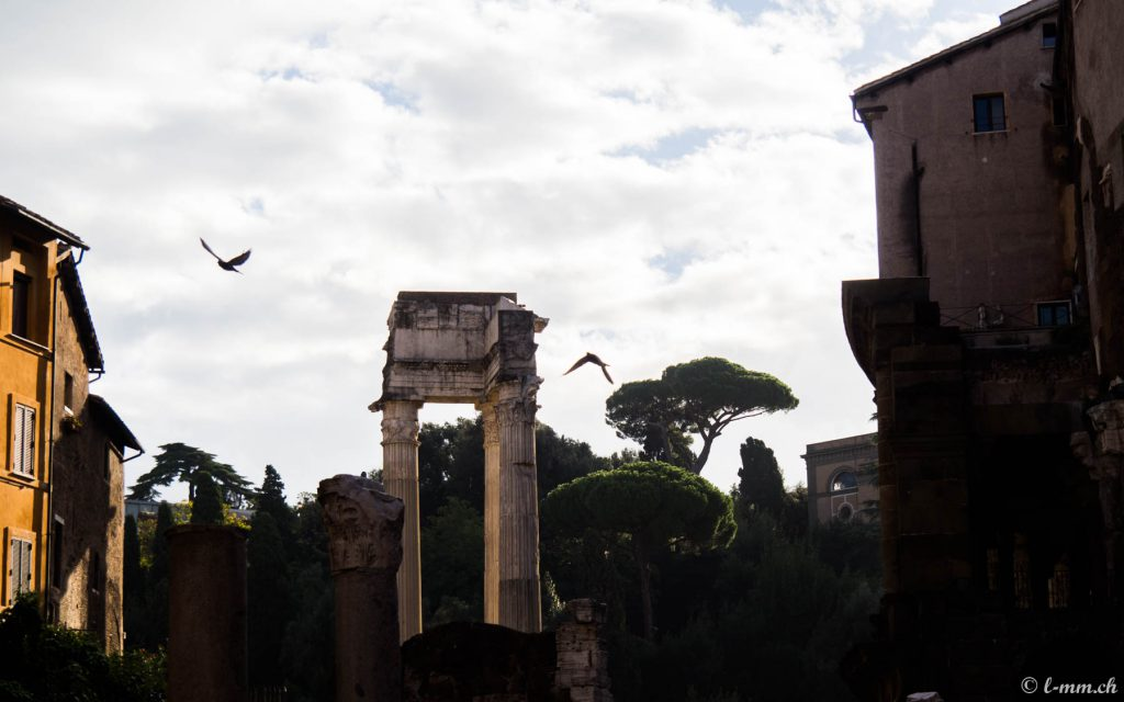 Temple d'Apollon Sosianus - Rome