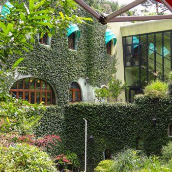 Vue du Musée Ghibli 2 - Mikata - Tokyo