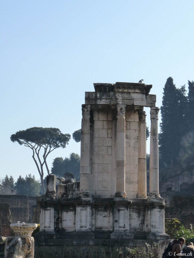 Le temple de Vesta - Le forum romain - Rome