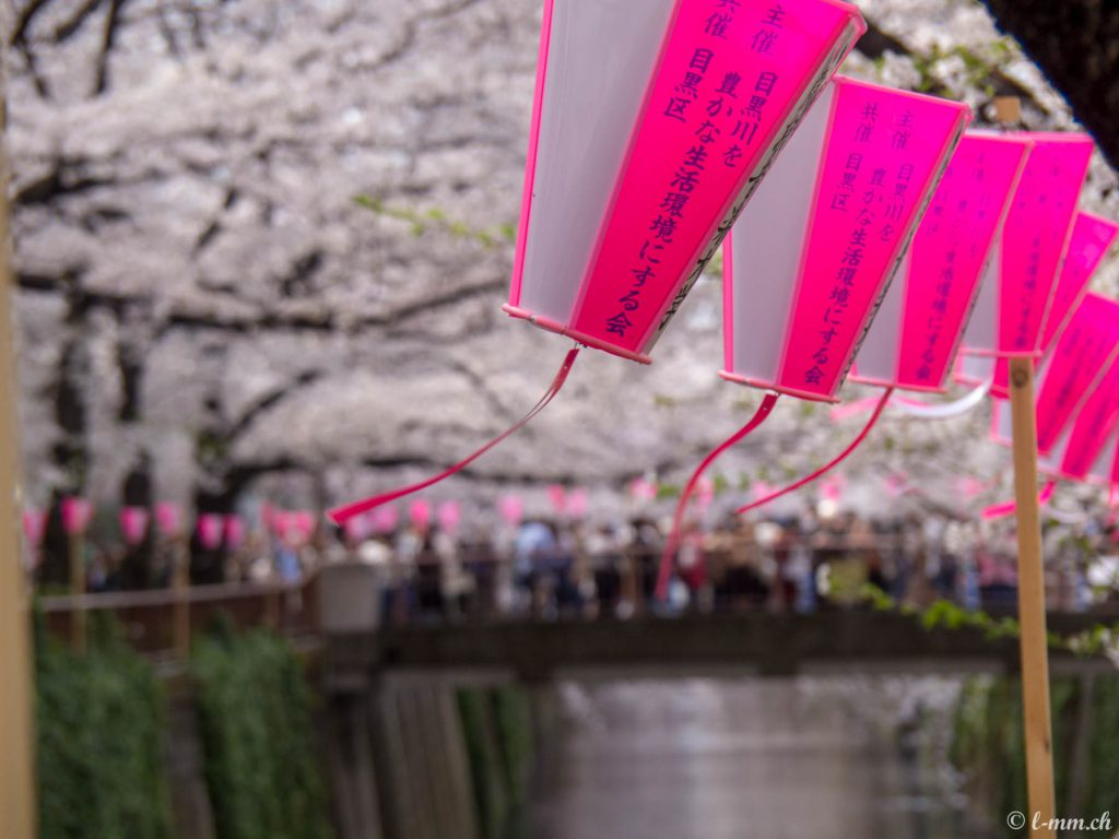 Meguro River - Hanami 2017 - Tokyo