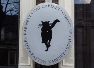 Cat Cabinet 1 - Amsterdam - Pays-Bas